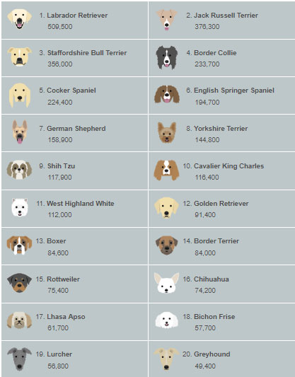 dog map