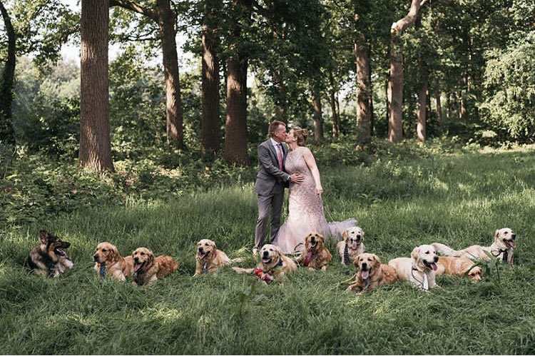 This Dutch couple just had all the dogs at their wedding!