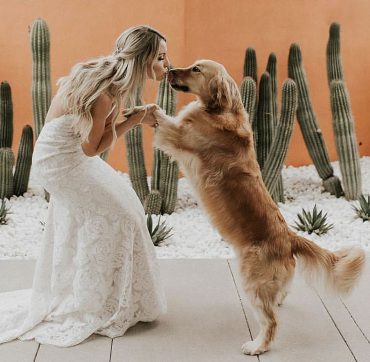 It's not just the groom that gets a kiss!