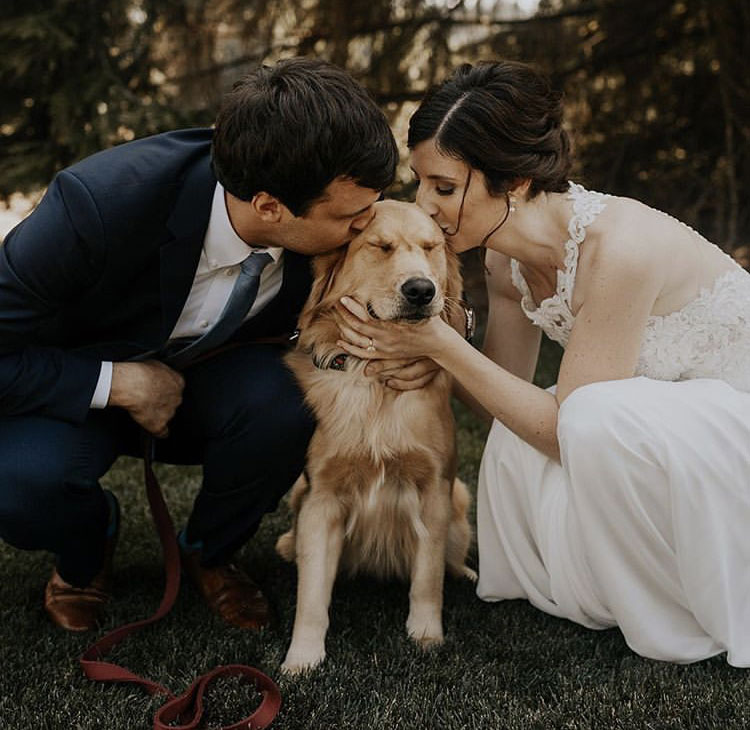 This dog definitely stole everyone's attention at their wedding