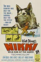 Nikki, Wild Dog of the North
