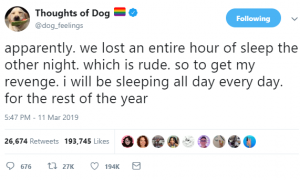 thoughts of dog 13