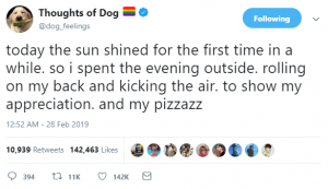 thoughts of dog 14