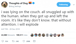 thoughts of dog 20