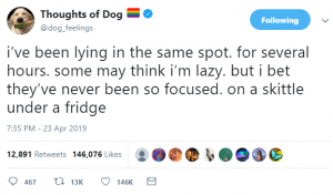thoughts of dog 6