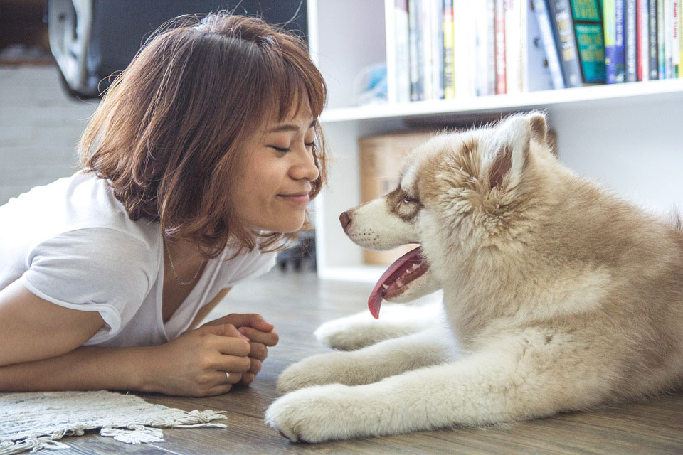 Is Our Love For Dogs In Our Genes?