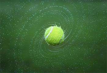 tennis ball dog teeth